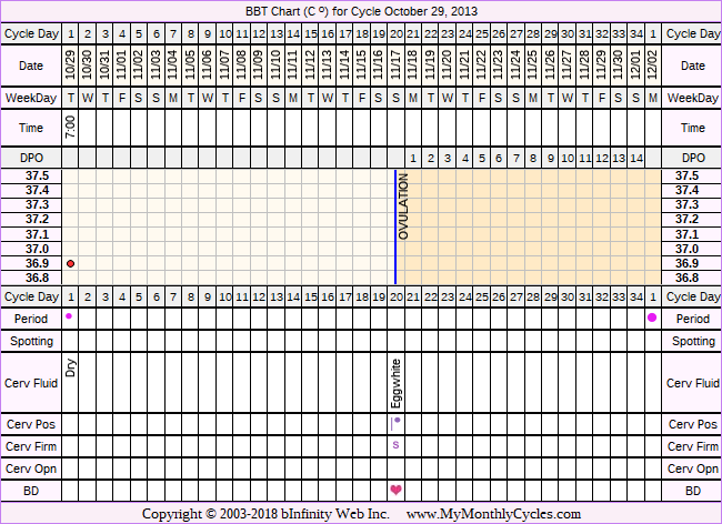 Fertility Chart for cycle Oct 29, 2013, chart owner tags: BFN (Not Pregnant), Stress Cycle