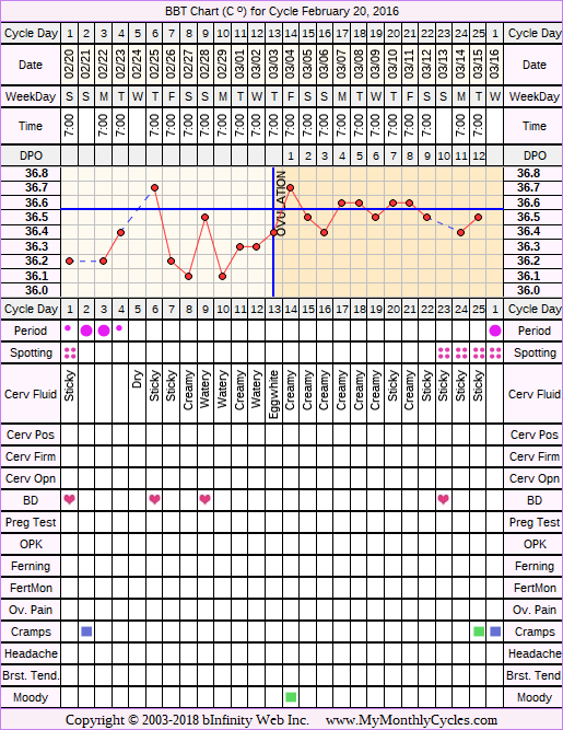 Fertility Chart for cycle Feb 20, 2016, chart owner tags: BFN (Not Pregnant), Biphasic, Slow Riser, Stress Cycle